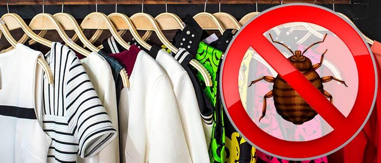 Одежда на тремпелях