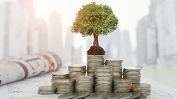 Макет дерева на монетах