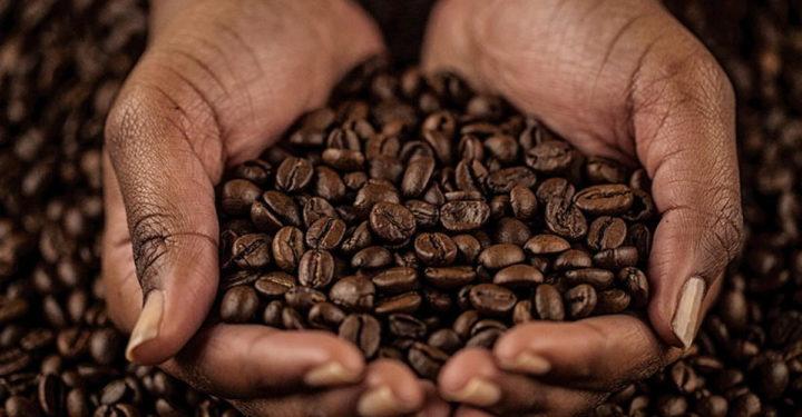 Кофейные зерна в руках