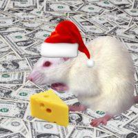 Крыса, сыр и деньги