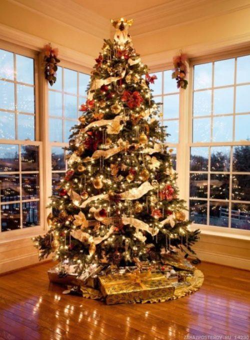 Где поставить елку для удачи в любви и семейного счастья