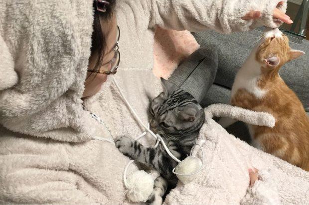 Комбинезон с карманчиком для кота