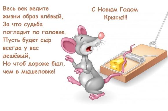 С Новым годом Крысы