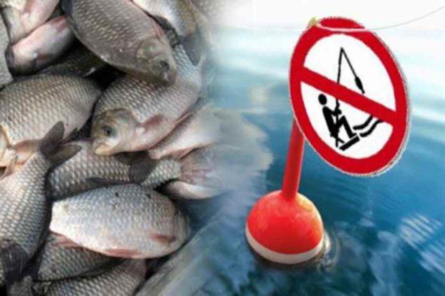 Запрещенные способы и орудия ловли рыбы
