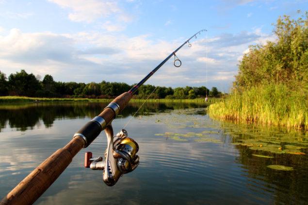 Разрешенные и запрещенные для рыбалки места