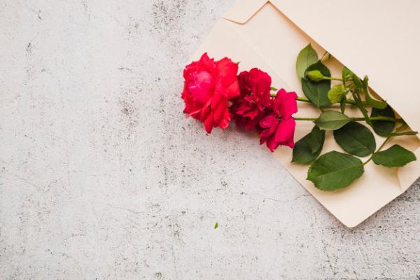 Подарочный конверт с розами