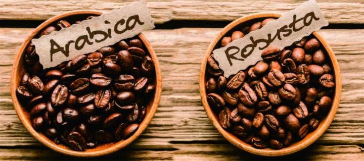 Кофейные зерна арабика и робуста