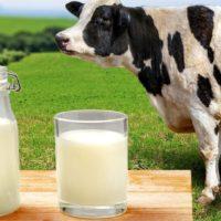 Лучшее и худшее молоко 2020