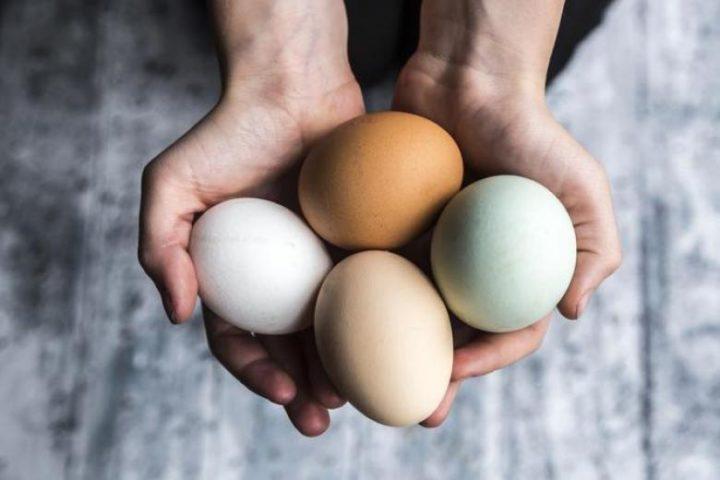 Держит куриные яйца в ладонях