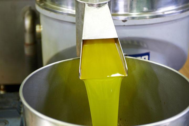 Струя оливкового масла из перегонного аппарата в процессе производства