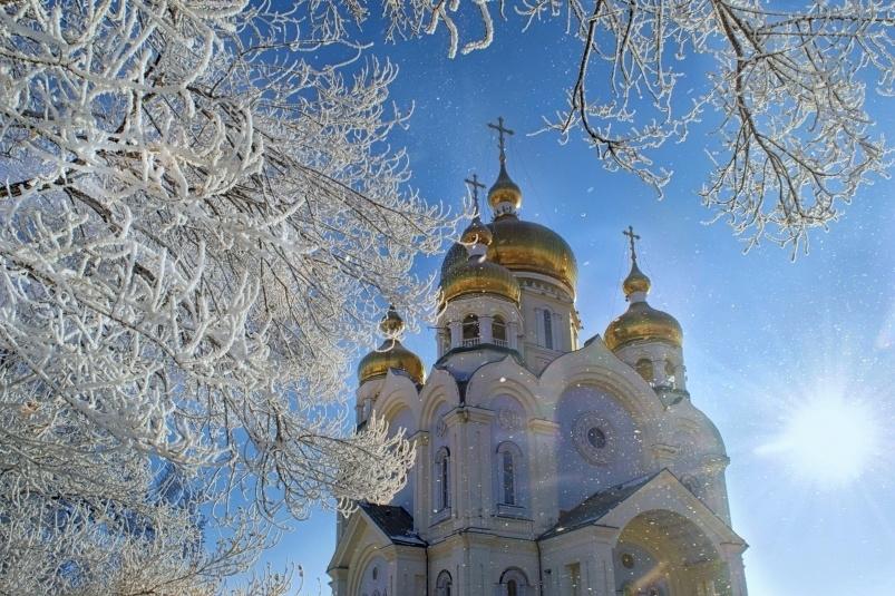 Заснеженные деревья на фоне церкви