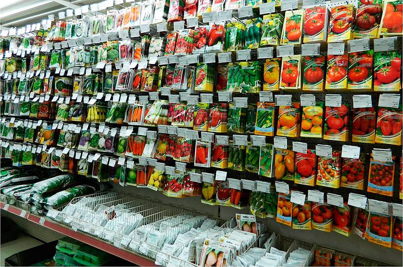 В магазине семян