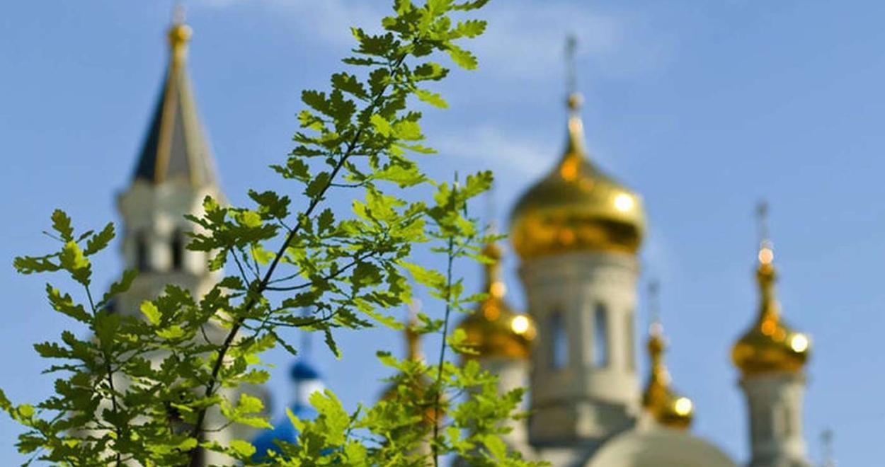 Летняя зелень на фоне золотых церковных куполов