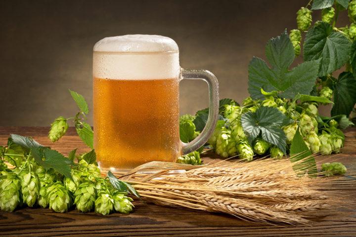 Кружка пива на столе